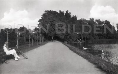 1196S Pildammsparken