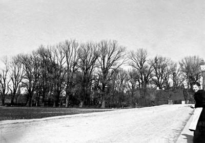 rönneholsvägen utanför pilstorps gård för bloggen